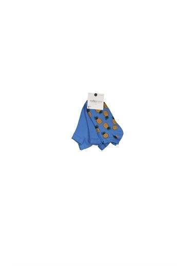 Collezione Collezione 3'Lü Ananas Desenli  Kadın Çorap Mavi